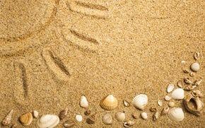 Обои песок, песок морские раковины, текстура, море, пляж, ракушки
