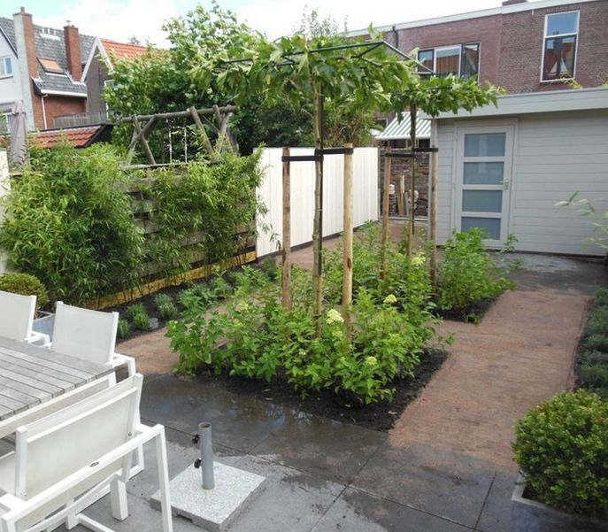 Small garden design with shed and patio