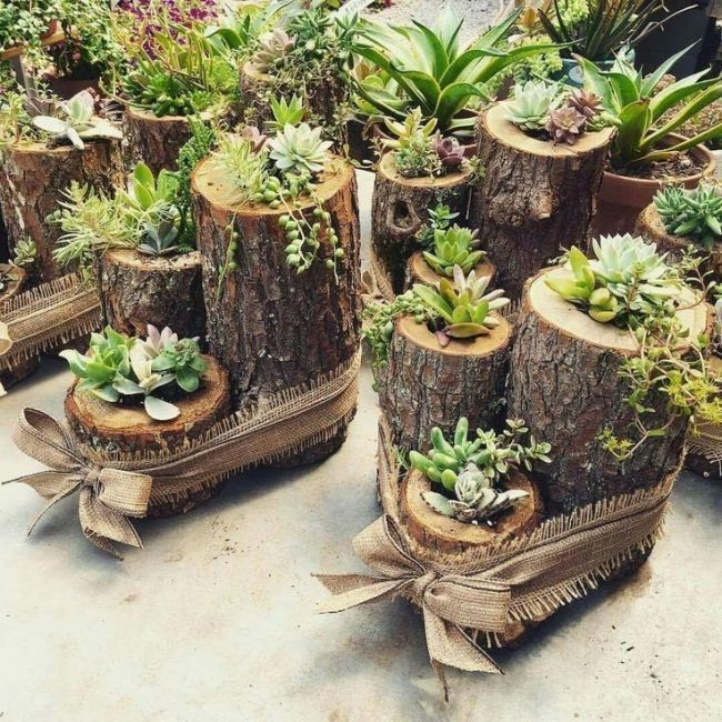Succulents, candle holders, natural wood