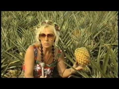 Ananasy - prawdziwa cena luksusowego owocu - YouTube
