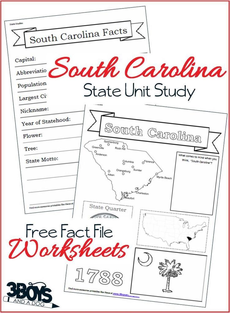 an analysis of the geography of south carolina The geography course is delivered by university of south carolina  up to and  including analysis of variance and basic regression in geographic applications.