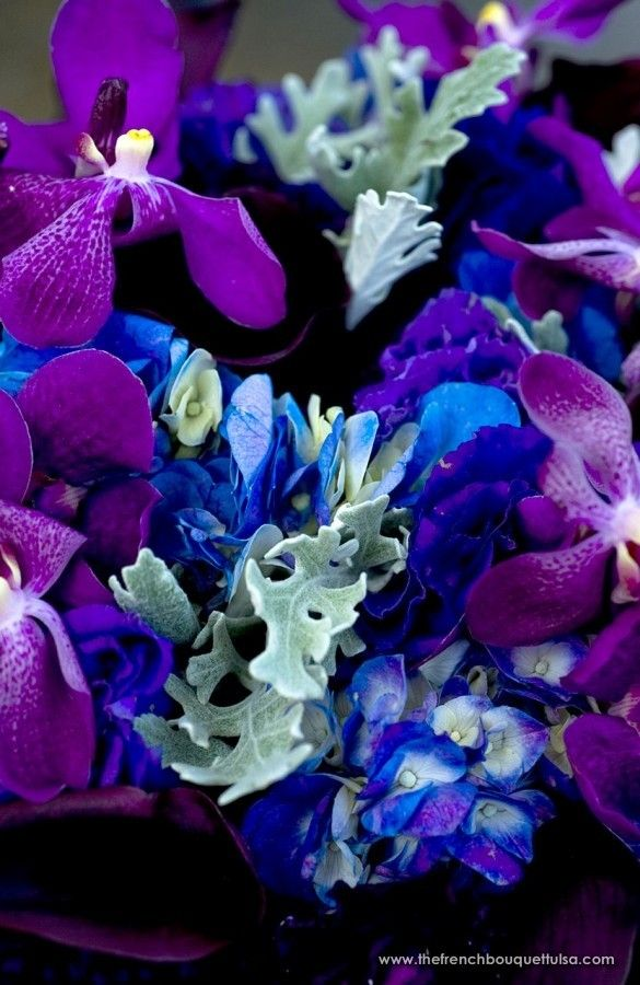 Upclose Shot Of Bright And Royal Purple Bridal Bouquet Mokara Orchids Dusty Miller