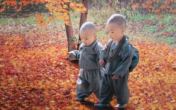 Poţi încerca şi tu să înveți din tradițiile poporului tibetan.Cel mai important este să nu aplici pedeapsa fizică şi umilinţa psihică. Singurul motiv pentru care unii părinţi bat copiii este pentr...