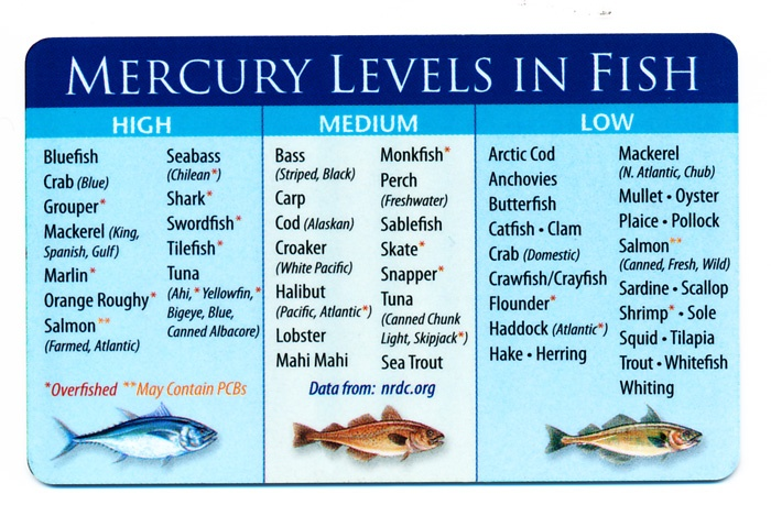 132 best images about beef pork and seafood recipes on for Mercury levels in fish chart