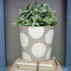 Add freshness to your decor with this simple yet stylish painted pot and faux plant tutorial.