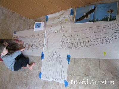 Brimful Curiosities: Bald Eagle Projects, Activities and Crafts for Kids - Decorah Eagles - Science Sunday