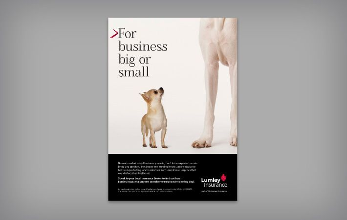 Lumley advertisement