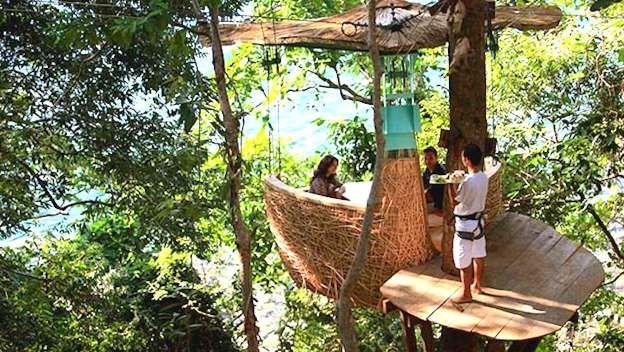Un repas dans les airs Les clients de l'hôtel Soneva Kiri (Thaïlande) peuvent déguster de la nourriture gastronomique dans les airs. Ils sont en effet confortablement installés dans une petite cabane de la forme d'un nid, faite de bambou et de feuillages. Et leur serveur, spécialement entraîné, apporte leur repas en tyrolienne.  - Photo Soneva Kiri