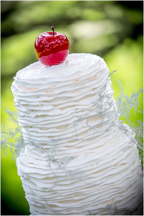 snow white wedding cake  | Image by Ludivine B, read more http://www.frenchweddingstyle.com/inspirational-fairytale-wedding-dordogne-valley/