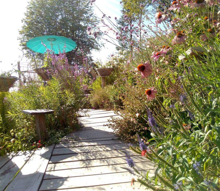 PLANTES VIVACES-http://www.plantes-vivaces-hurlevents.com/