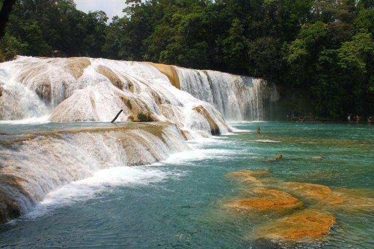 Agencias de viajes online para viajar a Chiapas - http://revista.pricetravel.com.mx/agencias-de-viajes/2015/05/21/agencias-de-viajes-online-para-viajar-a-chiapas/