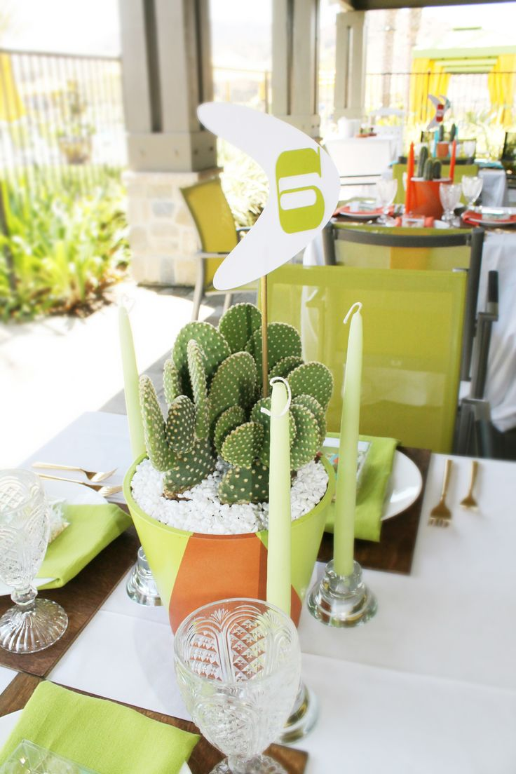 Midcentury modern dining table centerpiece with cactus and for Dining table centerpiece modern