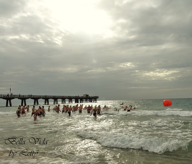 open water swim race