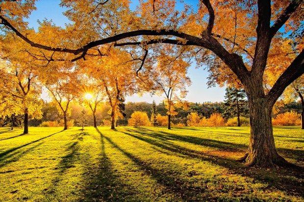 Φθινοπωρινές εικόνες | MpesVges.com