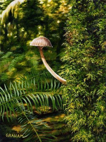 Nature's Little Umbrellas