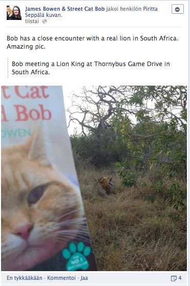 I blogged about the Lion in Thornybus Park in Greater Kruger Park in South Africa and about the book The Street Cat Named Bob after sharing this picture in Bob's Facebook page. The blog is written in Finnish and it's issue is to give tips to organisations to use social media better.