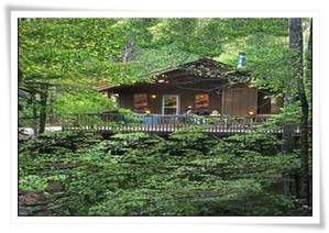 Exceptionnel Bryson City Pet Friendly Cabin Rental