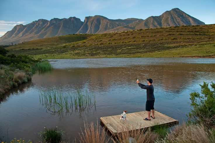 Enjoy Some Scenic Fishing At Your Stay With Vreda Vallei Self Catering  Eco Green Farm Swellendam Cape Town