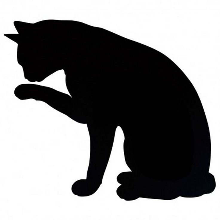 Black Cat Silouette...  looks like Mr.Pickles!