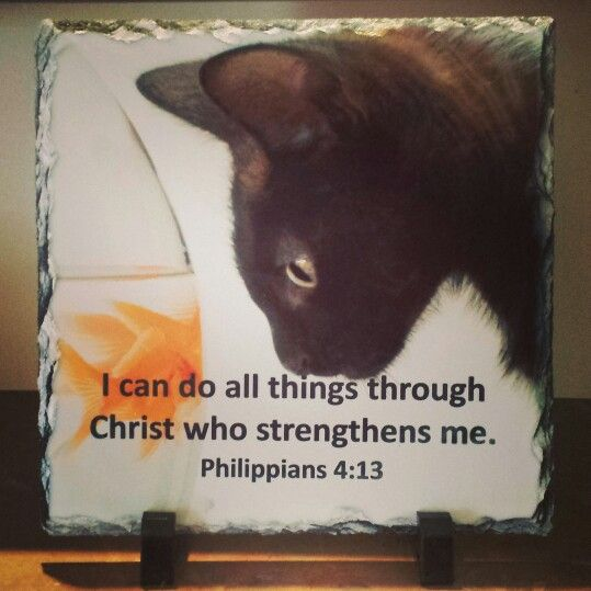 "Philippians 4:13 ""I can do all things through Christ who strengthens""    Handcrafted slate stone plaque with inspirational message, footrests and gift box included.      Limited stock available - http://www.biblestonesaustralia.com.au"