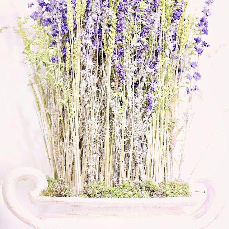 Voňavá levanduľa sušené delphínium a kytičky z klasov raže.  #kvetysilvia #kvetinarstvo #kvety #svadba #love #instagood #cute #follow #photooftheday #beautiful #tagsforlikes #happy#like4like #nature #style #nofilter #pretty #flowers #design #awesome #wedding #home #handmade #flower #summer #bride #weddingday #floral #naturelovers #picoftheday