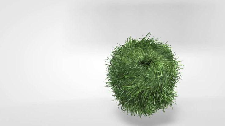 Hair Balls on Vimeo