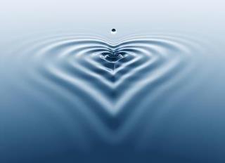 Estoy bajo el agua y los latidos de mi corazón producen círculos en la superficie. Milan Kundera