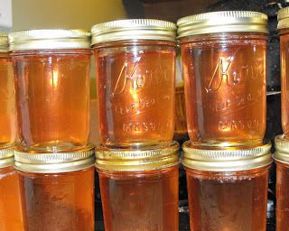 Peach Jelly. I like this recipe as it uses the skins and pits of the peaches which many of us normally discard.