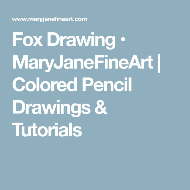 Fox Drawing • MaryJaneFineArt   Colored Pencil Drawings & Tutorials
