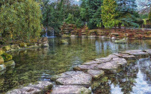 Waterfall and Stepping stones, Highfield lake.  P* remember how we danced across here?University of Nottingham