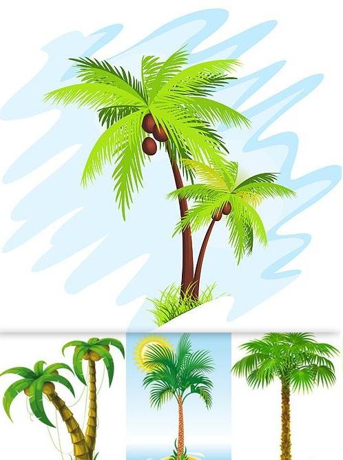 palm tree designs - Bing Images