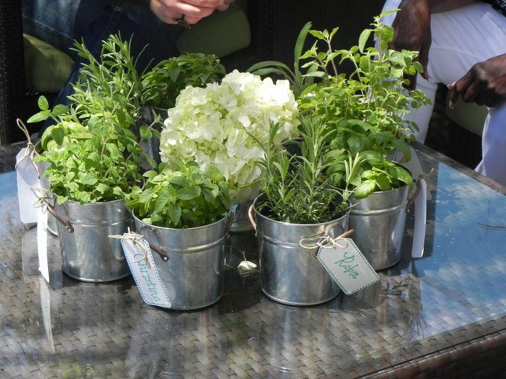Using metal buckets for plants, veggies or fruit   bridal