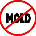 kill mold naturally - Canadian Basics