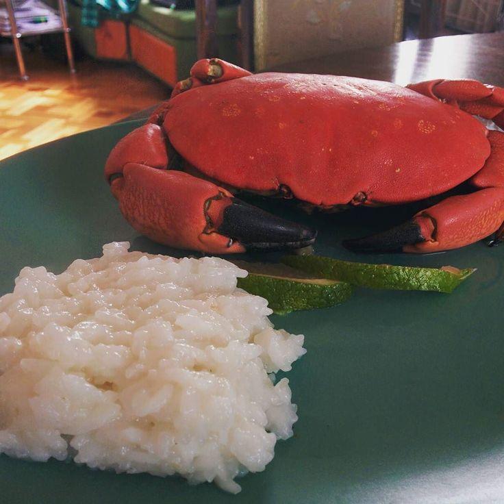 Today in Attila's kitchen  #crab #jaiba #fruttidimare #delicious #healthy #food #mutimiteszel #cooking