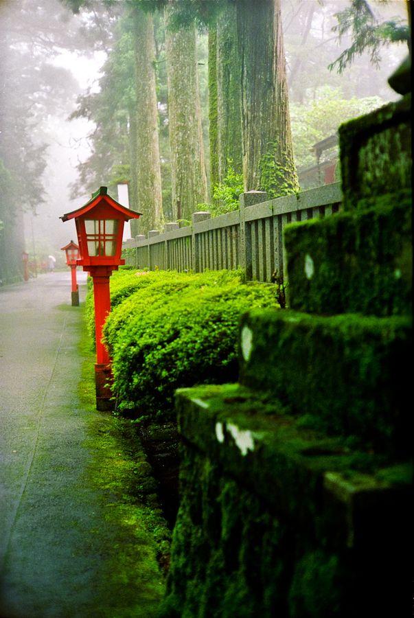 Morning fog of Hakone, Kanagawa, Japan Quels remarquables lampadaires ! Je marche sur cette route...