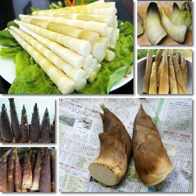 Cassava and bamboo shoots contain potentially toxic compounds called cyanogenic glycosides, linamarin and taxiphillin respectively, which break down upon disruption of the plant cells to form hydrogen cyanide. The toxicity of cyanogenic glycosides can be reduced by appropriate preparation of the plant material prior to consumption as food.