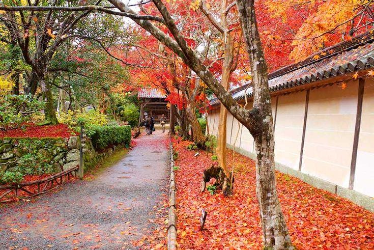 Arashiyma, Kyoto. Nisonin Temple, Sagano, Arashiyama, Kyoto; Tetsuji Sakakibara