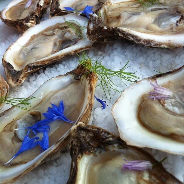 #PrinceEdwardIsland #oysters featured on menu @Musée d'art contemporain de Montréal http://www.macm.org/en/general-information/restaurant/ via @MariaSanz http://latabledemaria.tv/