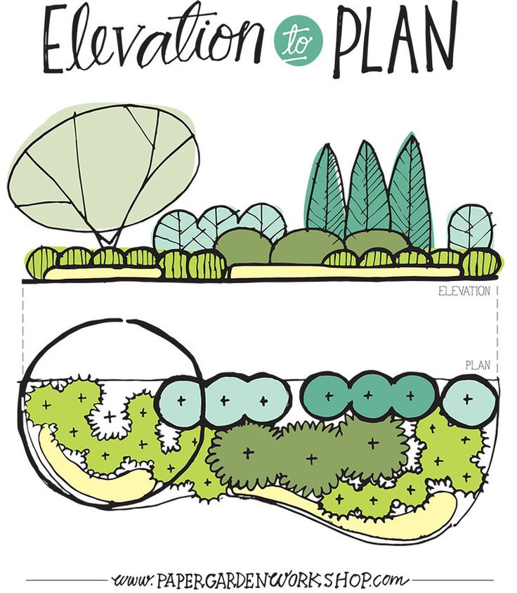 One of the best ways to design is to draw your ideas in elevation, especially when making a composition of plants. This allows you to visualize the plant forms in a holistic composition, rather then just looking at circles on paper. Though those circles on paper are also important. A proper plan will help you design the appropriate amount of plants for the depth of the bed, plus it provides a drawing for the installation of your design. If you stack these on top of the other and desig...