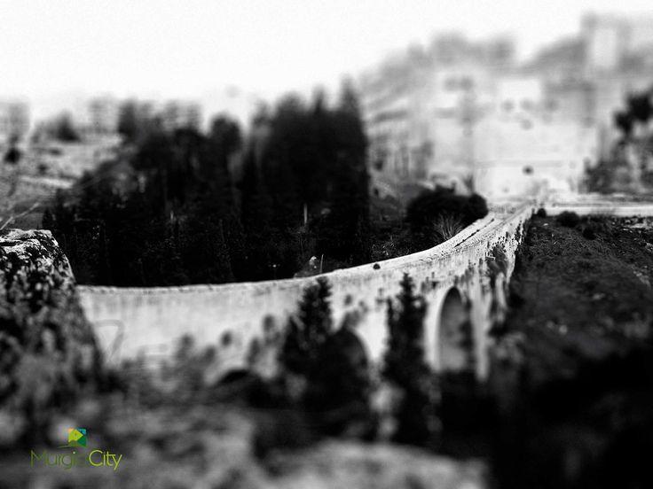 Alla scoperta di Gravina. Ponte Acquedotto  Orsini