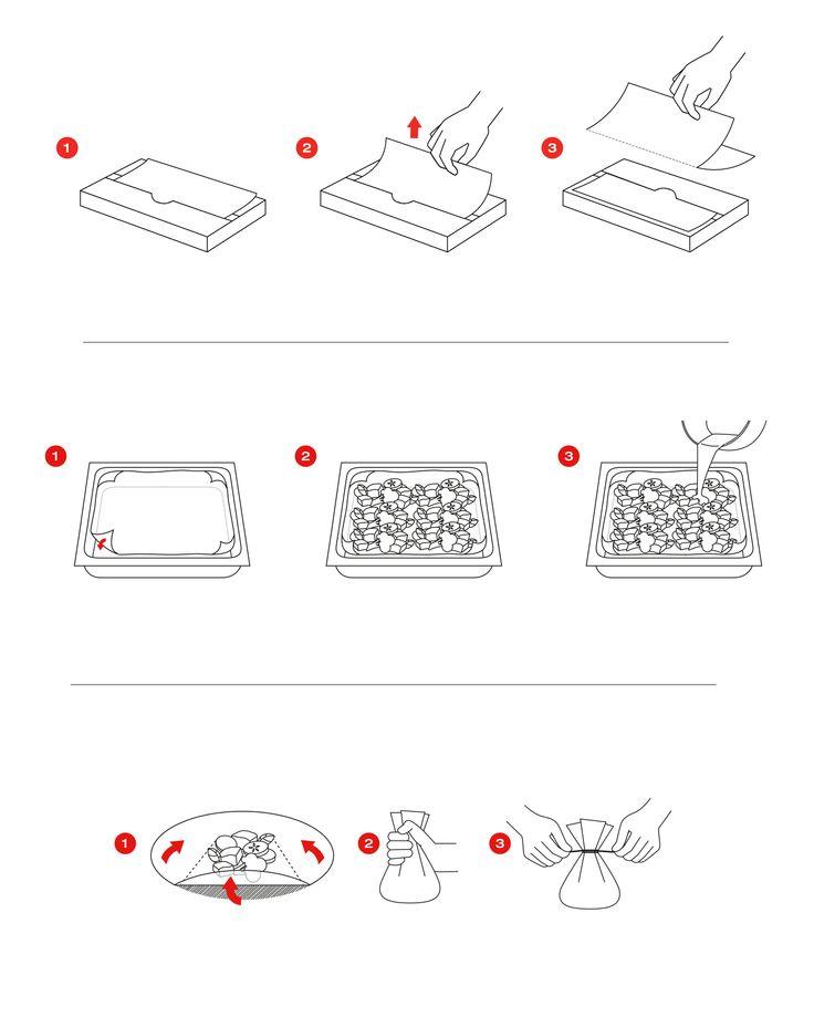Illustration/Infographics for SAGA / Metsä Tissue - by Pennanen Design