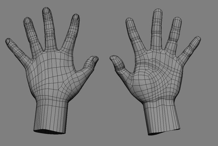 human hand topology 1-8 | body topology | Pinterest