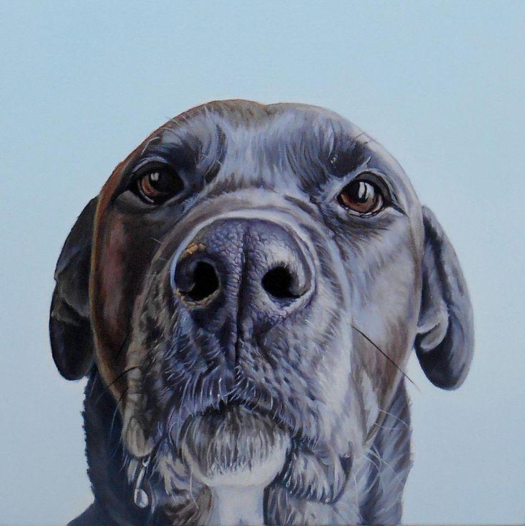 """""""Maddie"""" 12"""" x 12"""", oil on canvas, 2014"""