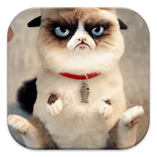 Get This Grumpy Cat Puzzle Games for Free. Enjoy to Play This Grumpy Cat Puzzle Games. Just Drag the pieces to the right place to create the image complete. Once completed. You can Also set As Wallpaper when You Finish the puzzle. Try to complete all levels Play the Games and enjoy the music.Note: This is unofficial app. This is Fans App That Create inspiring by Grumpy Cat Wallpapers.Tags : grumpy cat, grumpy cat meme, grumpy cat no, grumpy cat good, what kind of cat ...