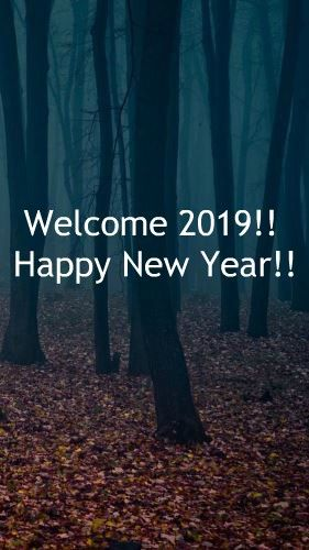 welcome 2019 happy new year 2019 quotes for friends family mom dad
