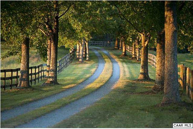 tree-lined drive #FarmhouseLandscape