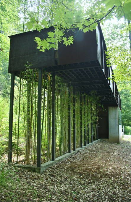 bamboo shoots upward through steel grates to your private slate and steel catwalk and terrace