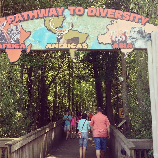 Cape May zoo-free admission