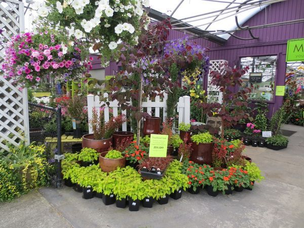 63 best garden center visual merchandising images on for Garden display ideas