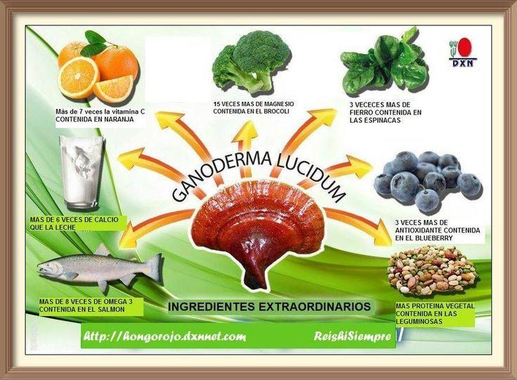 El mejor Ganoderma Lucidum. DXN es la compañía con mas experiencia en el sector de la investigación y desarrollo de las propiedades curativas del Hongo Ganoderma.
